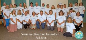 Volunteer Beach Ambassadors